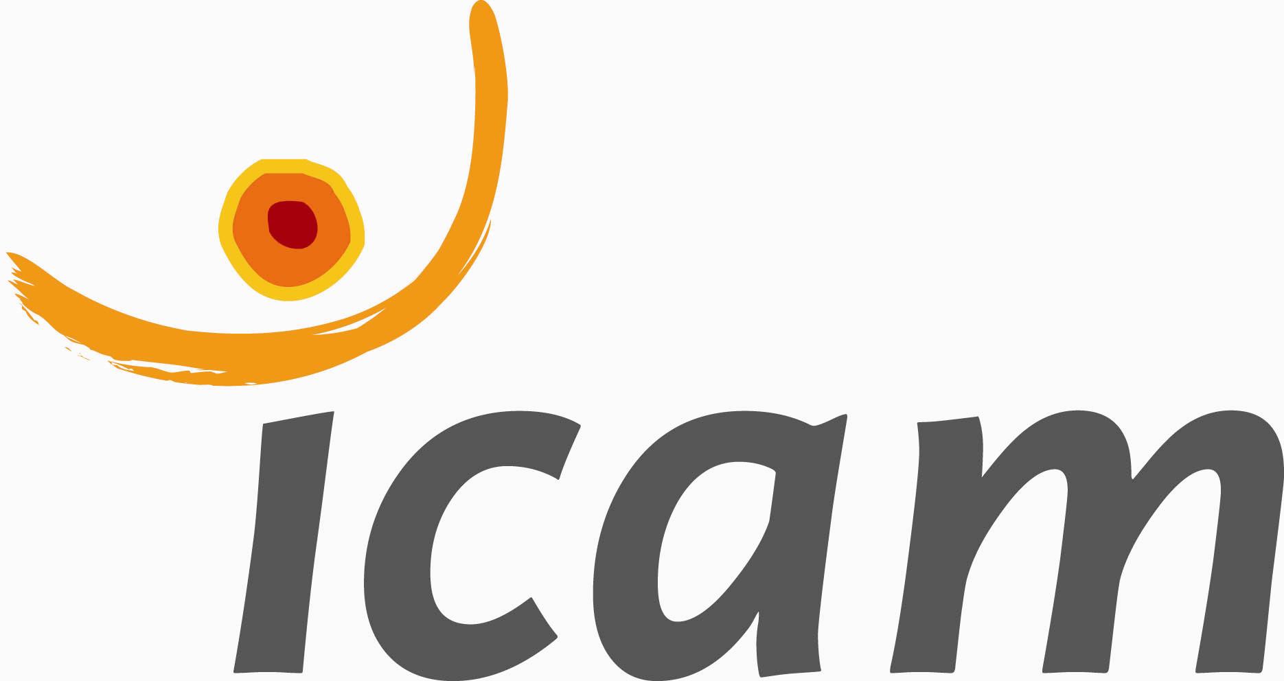 Logo ICAM 2008